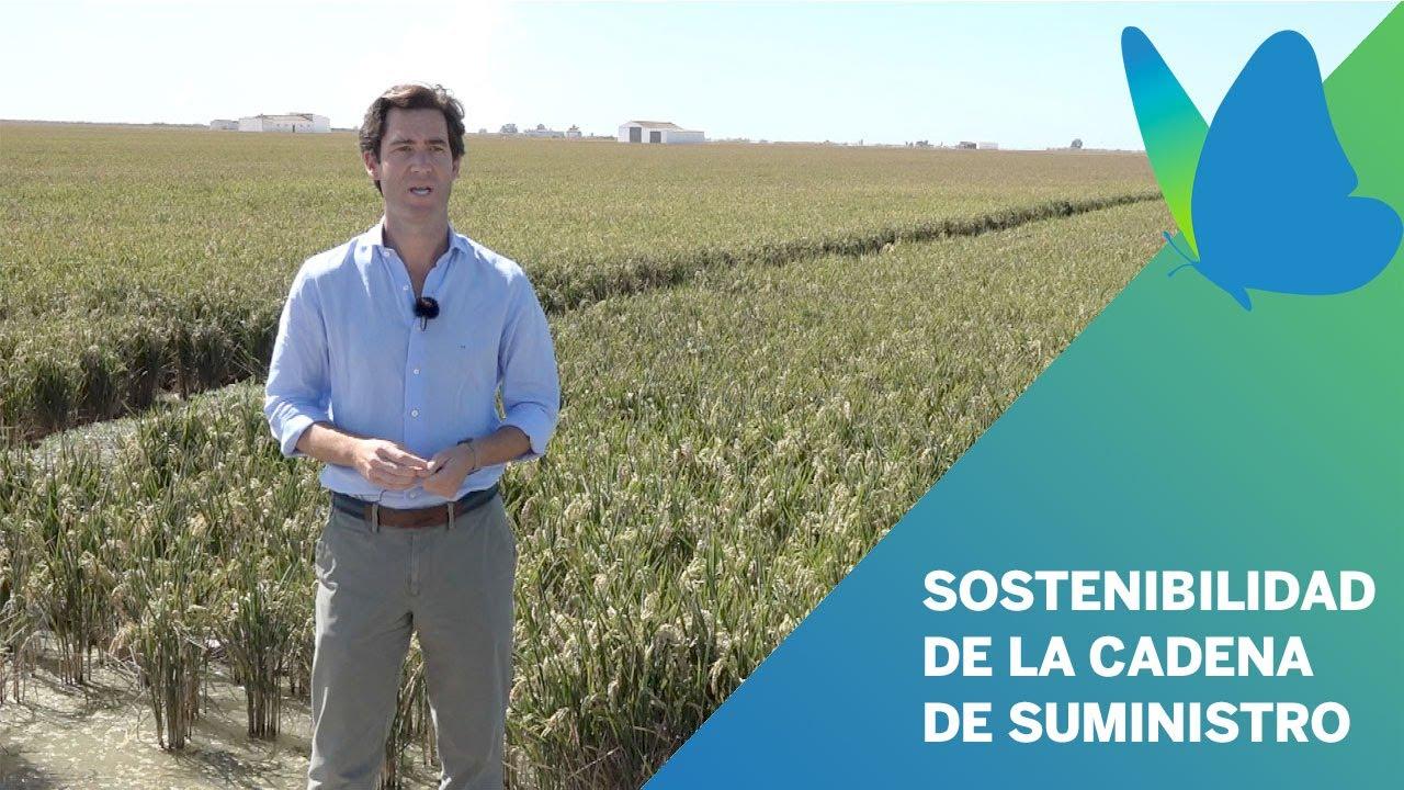 video Sostenibilidad en la cadena de suministro